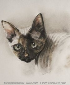 Pencil pet portrait of Henrietta