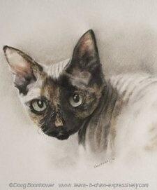 Pencil pet portrait of Henrietta