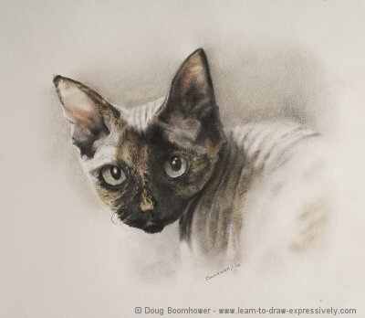 How to Draw a Cat using charcoal and pastel